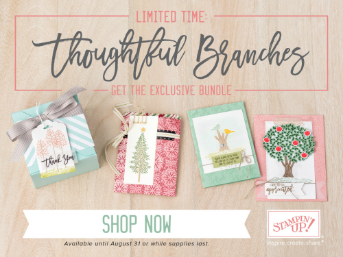 thoughtful branches, stampmecrafty.com, stampin' up!, stamping up, holiday cards, new stamp set, exclusive