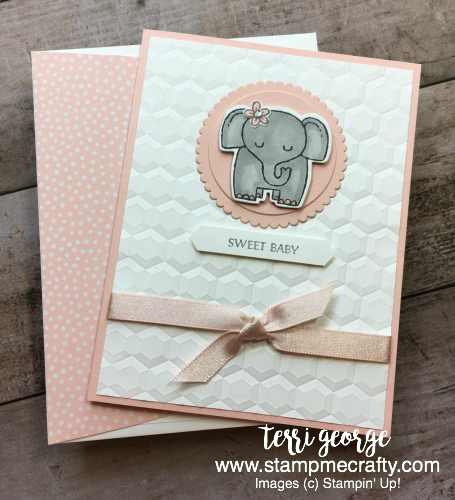 A Little Wild for Baby, Stampin' Up!, Stamp Me Crafty, Terri George Independent Demonstrator, Baby Cards, Baby Girl Cards, Handmade Cards, A little wild for a baby shower for the Pals June Blog Hop
