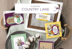 """Fall/Autumn Sampler, 12"""" x 12"""" Sampler, Home Decor, StampMeCrafty.com, Stampin' Up!, Sampler Class, Country Lane Suite by Stampin' Up!"""
