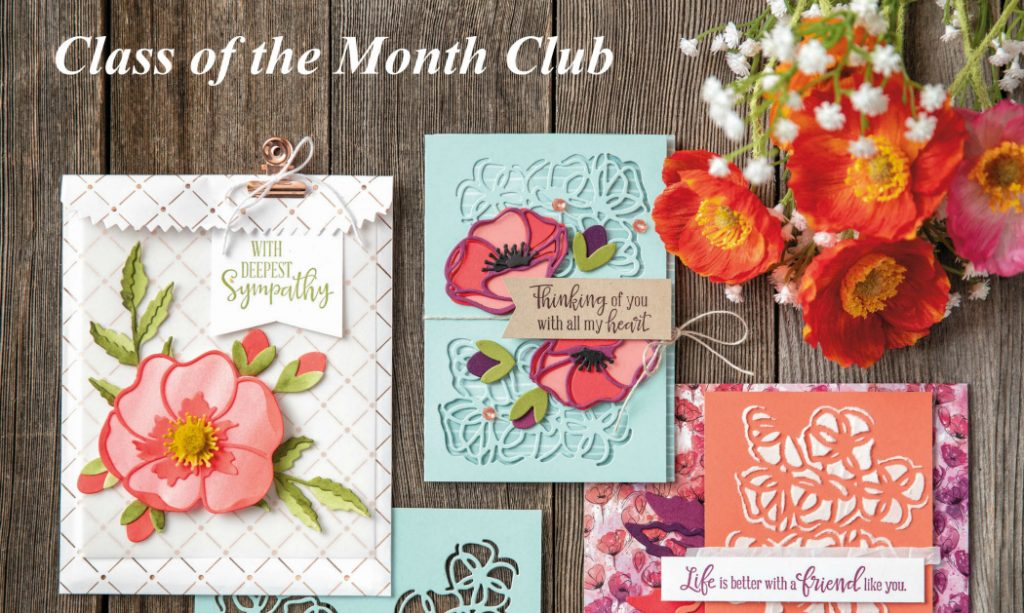 Class of the Month Club, Peaceful Poppies, Peaceful Moments, Handmade Cards, StampMeCrafty, Terri George, Stampin' Up!, Papercrafting classes